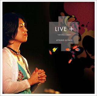 live_hiyajyo.jpg